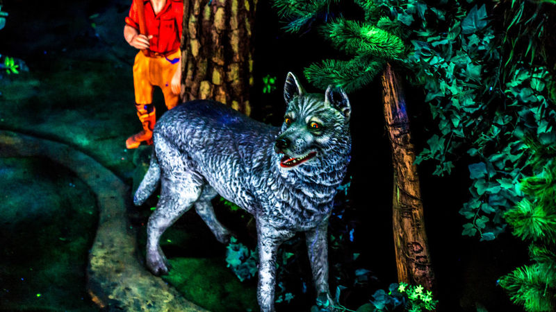 Animal Head  Animal Themes Little Red Riding Hood Mammal One Animal Outdoors Rock City Statue Wolf Zoology