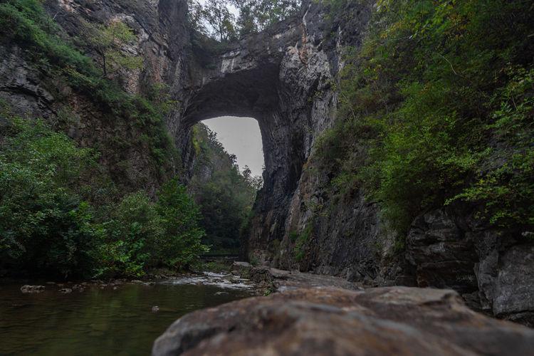 Take a walk Natural Bridge  Natural Bridge, Virginia Rock Formation Virginia Tree Water Forest River Bridge - Man Made Structure Sky Grass Physical Geography Natural Landmark Rugged Natural Arch