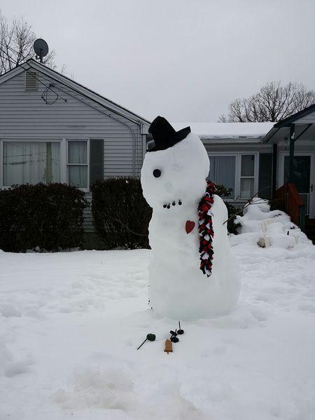 The Snowman's Lament. Melting Snow Snow Gray Sky Winter Day No People Eyeemphoto