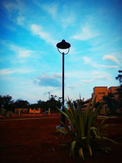 The Lamppost Lamp Post Lamppost Lamp Blue Blue Sky Bluesky Blue Background Plant Plant Part Pole Ground Ground Level View Buildings & Sky Buildings Cloud - Sky Cloud Clouds And Sky Clouds Silhouette Silhouettes Silhouette_collection Sky Cloud - Sky Calm