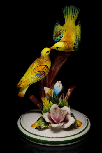 Birds Black Background Close Up Figurine  Light Box Light Tent Love Birds Low Key Miniature Still Life