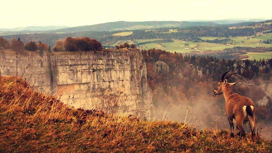 Creux du Van, Switzerland First Eyeem Photo