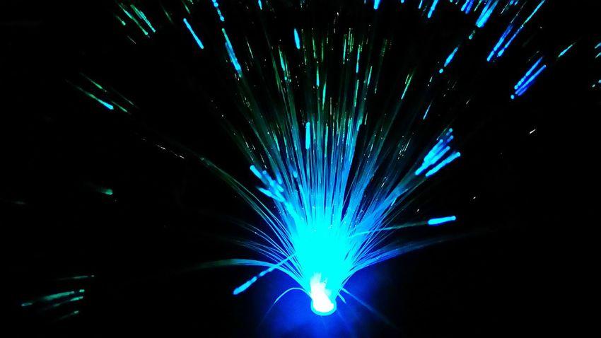 Fiber Optics Garden Decor Night