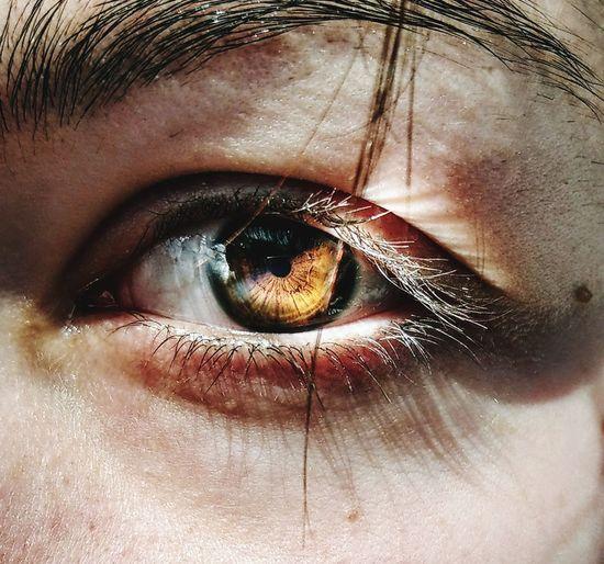 eye Eyeball Eyelash Eyesight Human Eye Sensory Perception Portrait Iris - Eye Looking At Camera Full Frame Beautiful Woman