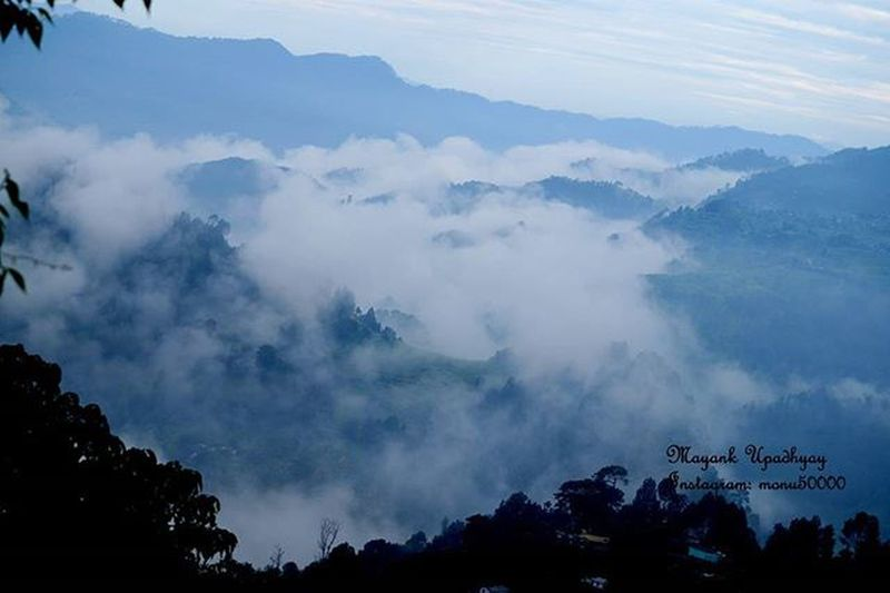 Somewhere in the hills of nainital, uttarakhand Hills Nature Naturelovers Nainital Mayank Fog Uttarakhand Travel_uttarakhand Travel Solo_travel Natgeo India Incredibleindia Pmoindia Monochromeindia Mash