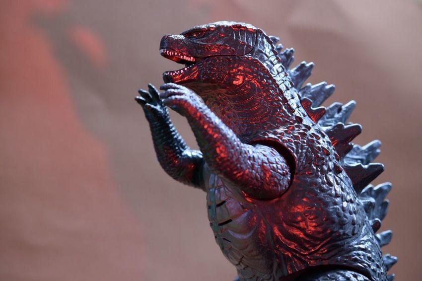 Macro Toys Toys Godzilla Macro Photography