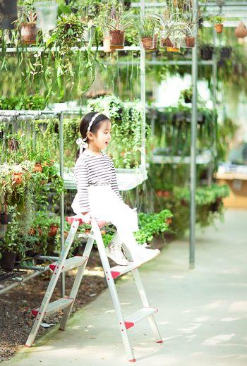 Full length of girl sitting on step ladder at botanical garden