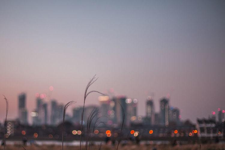 Defocused image of illuminated city against sky at dusk