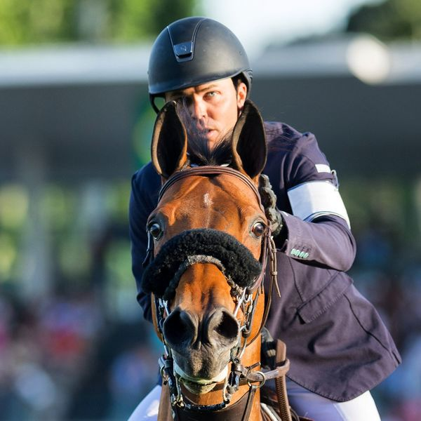 Kent Farrington Showjumping Showjumping Competition Rider Focus Equestrian EyeEm Selects Horse One Animal Adult Horseback Riding People Sport Portrait