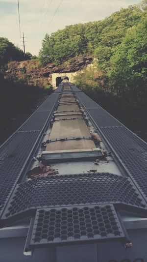 Train Walk Summer Photography
