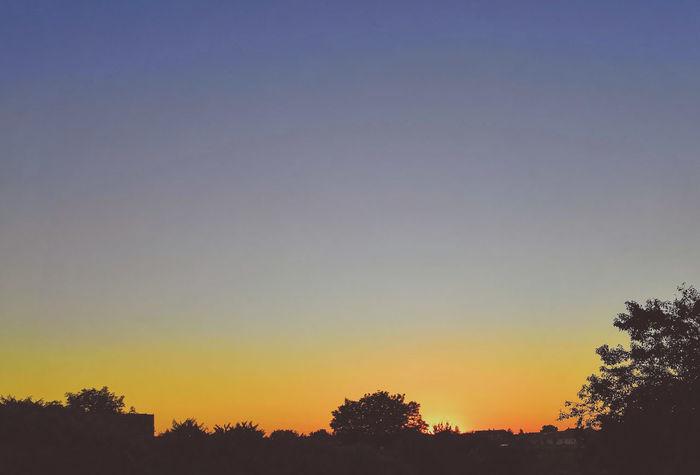 EyeEm Selects Sunset_captures Sunset_stream Sunsetphotography Sunsetsniper Sunsets_oftheworld Sunset_hub Sunsets Sunset_ig Sunset_lovee Sunset_pics Sunset_greece Encsencs Ikozosseg Sunset_madness Sunset_lovers Sunsetlover Sunsetsky Sunsetlovers Sunset_madness_ Sunsetporn Sunset_vision Mik Sunsets_captures Tree Sunset Silhouette Tree Area City Multi Colored Pixelated Dusk Sky