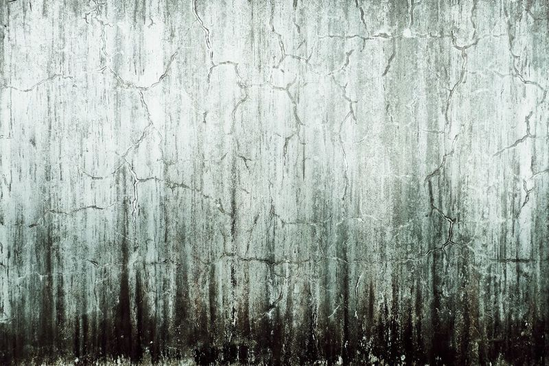 Storm in Forest Abstract EyeEm Gallery First Eyeem Photo Eyeem Philippines Wet Weather Wall Textures Stains And Cracks Stained Wall EyeEm RainyDay