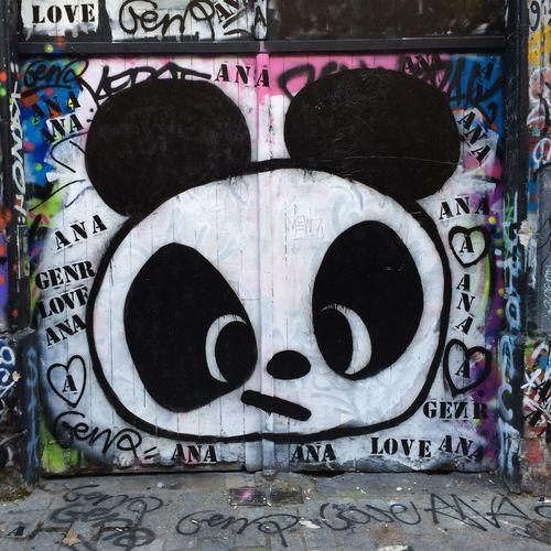 Belleville Panda Streetphotography PANDA ♡♡ Pandashots