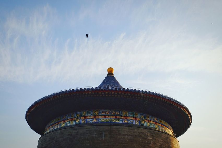 Architecture Travel Destinations History Low Angle View Sky Royalty Built Structure Outdoors Day Bird No People King - Royal Person Traditional Architecture Traditional Building Beijing, China Old Architecture FUJIFILM X-T10 Temple Of Heaven Park Warm Winter China View Old Building  China Culture Travel Architecture Cloud - Sky