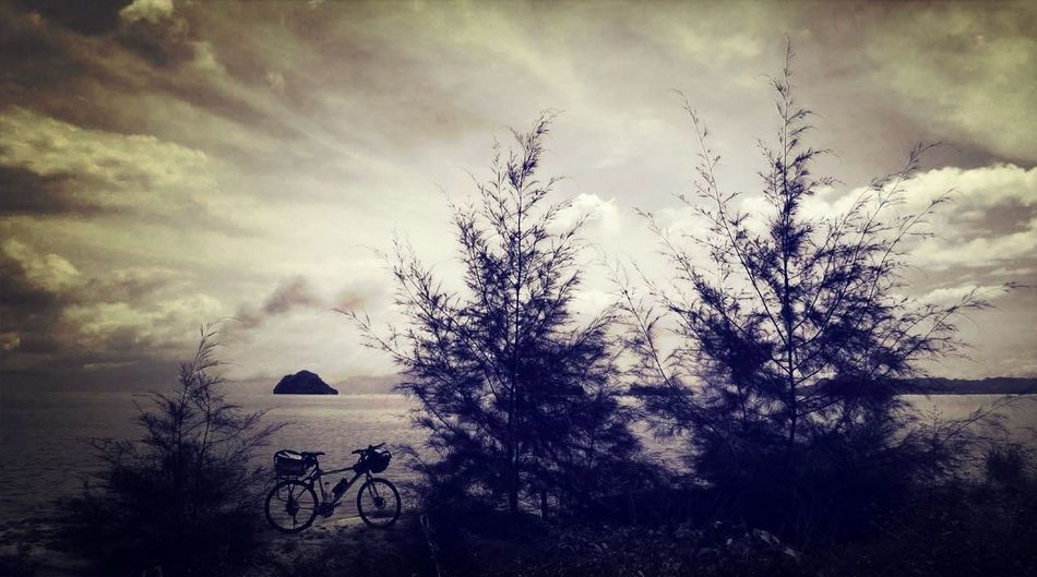 Cycling Around Beach & Bicycles