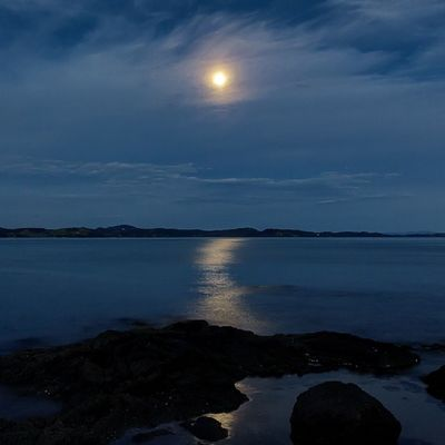Moon through clouds at Maraetai. My phone is showing the foreground rocks as pure black silhouette. They're not. Just fyi if your phone does the same. Newzealand Landscape Aoteoroa Photography nature moon twilight travel auckland blue nocturn nocturnal ocean reflections
