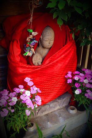 Glance Face Tokyo,Japan Streetphotography Street Plants Flower Decoration Jizou Imagine