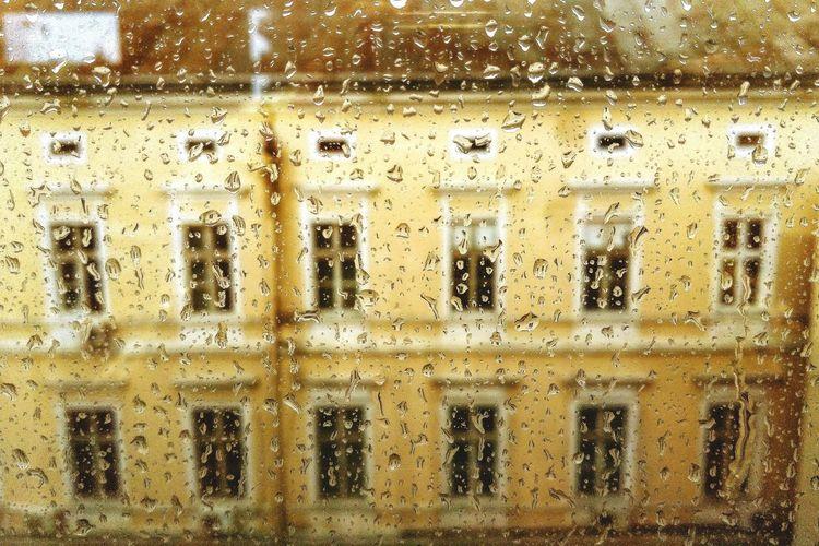 Through a rainy