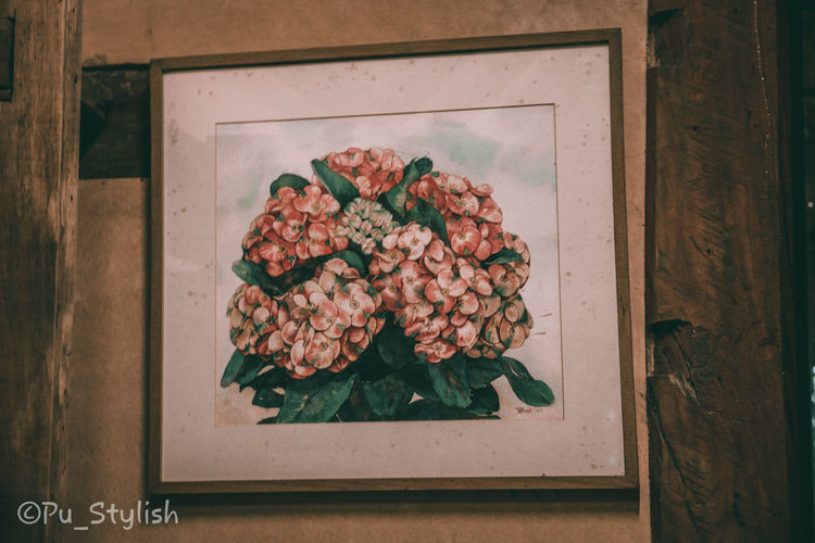 High angle view of flowers in container on table