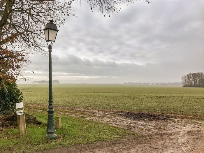 Out in the Countryside around Paris 😀 Janvry France Nature Tranquility Field No People Landscape Streetlamp Trees IleDeFrance Iphonephotooftheday Mobilephotography Iphonephotography Iphonographie EyeEm Iphoneonly EyeEm IPhoneography Outofthephone IPhoneography Snapseed Photooftheday Nature