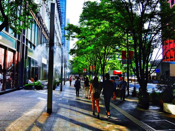 mister on the street. Mister Walking Around Marunouchi Nakadori Fujifilm XQ1 at Ootemachi in Tokyo Japan