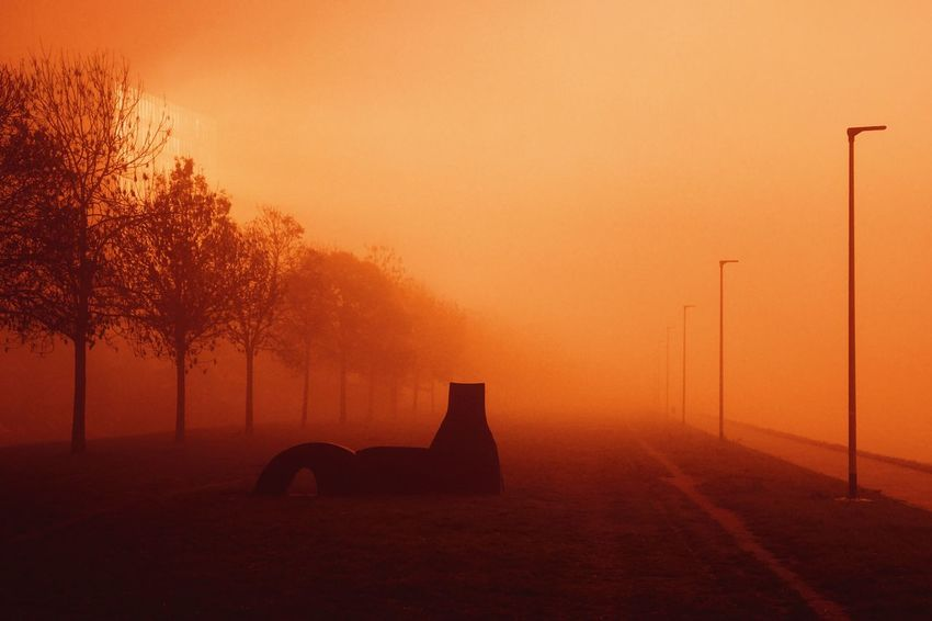 Orange Color Silhouette Beauty In Nature No People Tranquility Fog Outdoors Scenics Landscape Morning Light Sunrise Riverbank