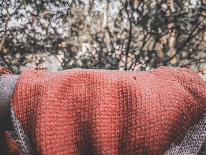 Close-up of hat on land