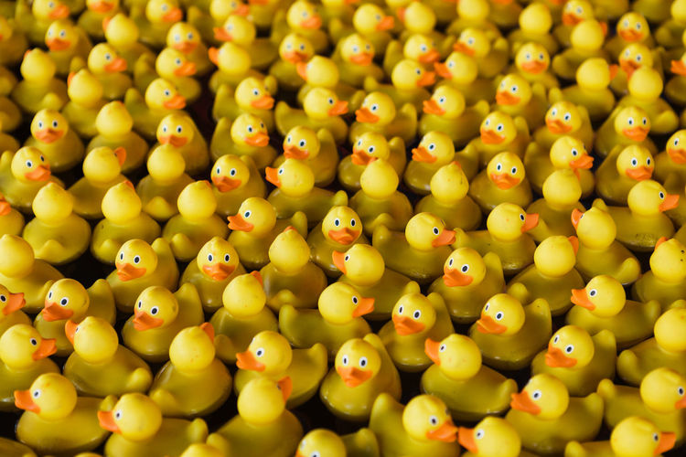 High angle view of rubber ducks for sale at market stall