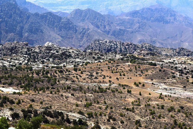 High angle view of village in valley