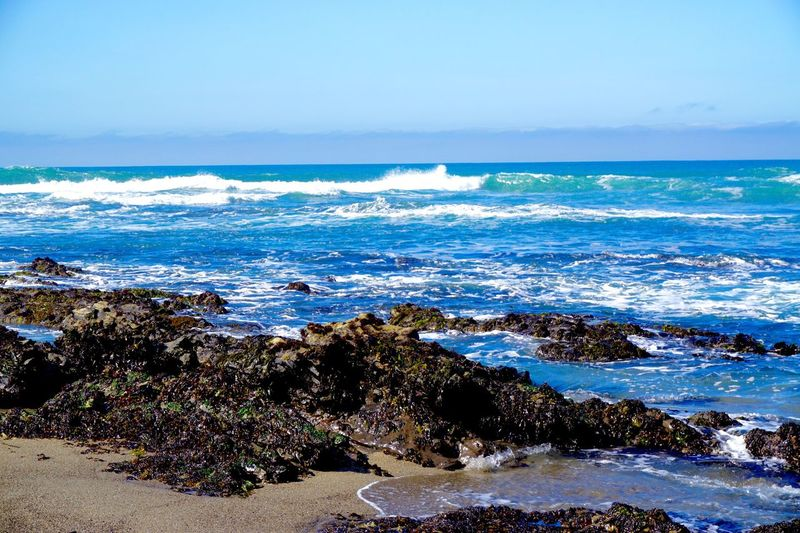 Blue Wave Davenport  California Paradise Oceanview Beach Nature Outdoors Landscape Takingpictures Sonya6000 Blue Beautiful Photography Photooftheday