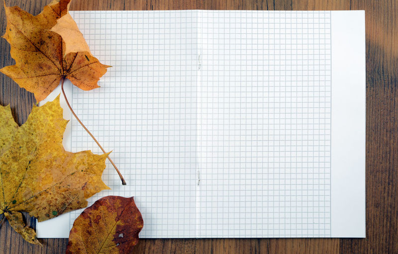 Close-Up Of Autumn Leaves On Book