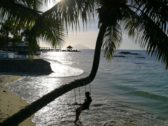Water Tree Sea Nature Beach Silhouette Beauty In Nature Sunlight Outdoors Scenics No People Shadow Tranquility Horizon Over Water Landscape Day Sky Tropical Paradise Adventure Berjaya Beach Seychelles Travel Destinations Swing Tranquil Scene Beauty In Nature Aesthetic