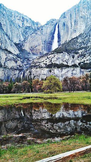In Yosemite National Park