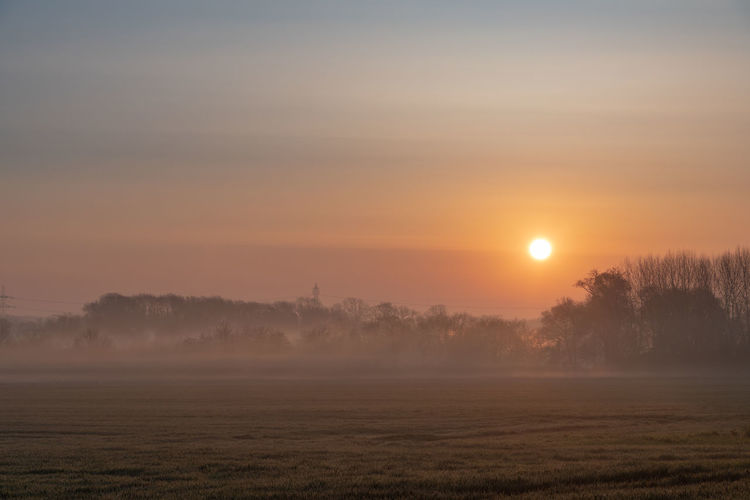 Misty sunrise in rural Cambridgeshire countryside Beauty In Nature Sky Sun Sunset Fog Scenics - Nature Tranquil Scene Environment Tranquility Landscape No People Orange Color Tree Nature Plant Non-urban Scene Land Field Hazy  Outdoors Cambridgeshire United Kingdom England