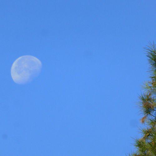 Hoy menguante. Skylovers Moon Lunalunera Zaragoza