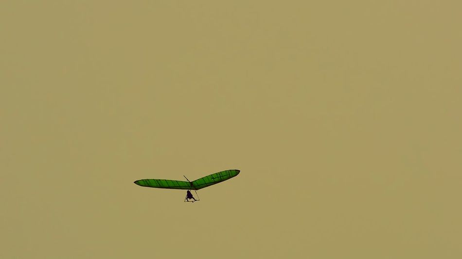 43 Golden Moments Golden Hangglider Check This Out Green Gold White Space Flying Imagine Simplicity Minimalism Simple