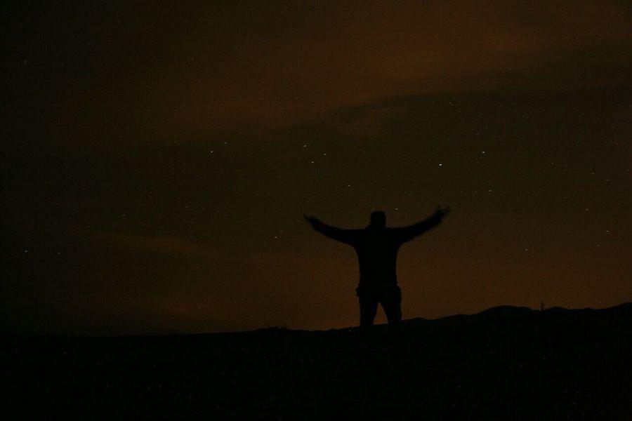 One Wild Night Sandy Lands