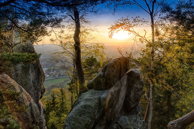 Sunset in hilly Kotlina Klodzka (Poland), trees on huge rocks in foreground Beauty In Nature Branch Day Forest Growth Idyllic Landscape Mountain Mountain Range Nature No People Non-urban Scene Outdoors Scenics Sky Sun Sunlight Sunset Tranquil Scene Tranquility Tree Water