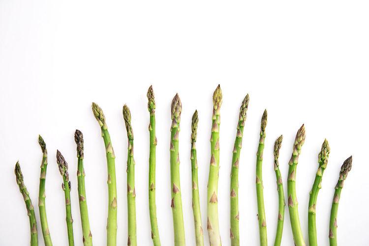Asparagus on