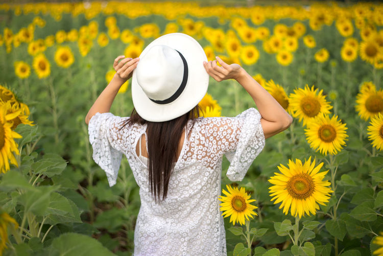 Midsection of woman standing by sunflower field