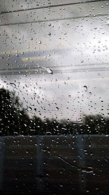 Water Wet Drop Window Rain No People Glass - Material