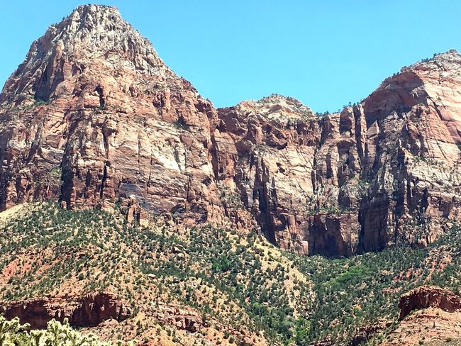 Zion National Park, Utah, USA National Park Nice Day Nice View Rock Formation The Week on EyeEm Background Backgrounds Beauty In Nature Clear Sky Day Mountain Mountains Mountains And Sky Nature No People Outdoors Physical Geography Rock - Object Rock Formation Scenics Sky Summer The Way Forward Tranquility Tree