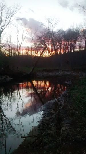 Hanging Out Taking Photos Check This Out Relaxing Enjoying Life Concerned Exhausted Tired Sunset Clouds And Sky Clouds Sky Tree Trees Creek Creeks Water Reflections Water Reflection