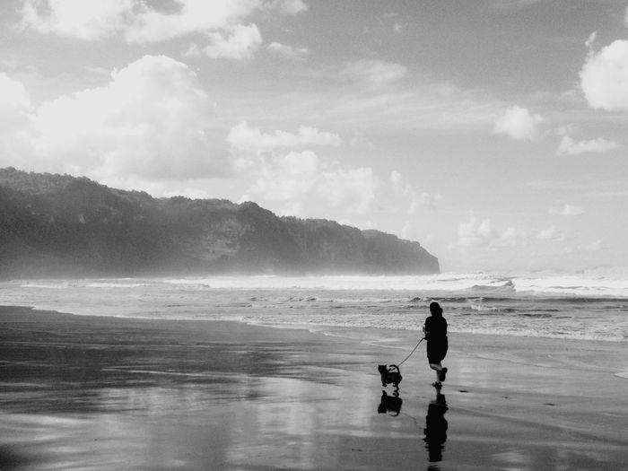 Rear View Of Woman Walking With Dog At Beach