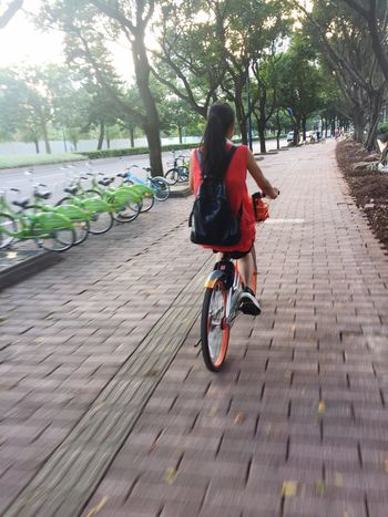 Bicycle Guangzhou Canton City Lifestyles EyeEmNewHere IPhone