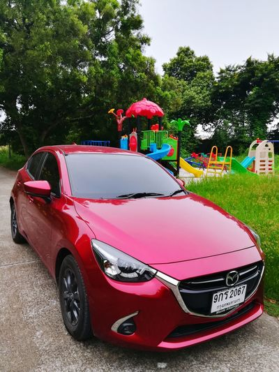 Red toy car in park