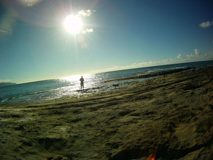 a man a pupper a moment Beachdogs Hawaii Luckywelivehi Ocean Water Sea Beach Sand Sunlight Sky The Great Outdoors - 2018 EyeEm Awards