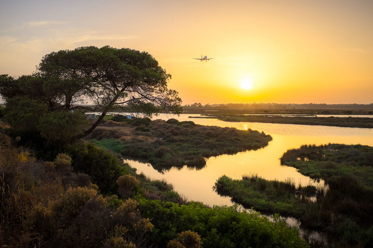 Landing Air Vehicle Aircraft In Sunset Airplane Airplane In Sunset Flying Nature No People Sky Sunlight Sunset