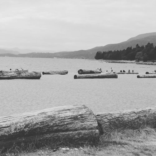 Vancouver BC Hanging Out Beach Vancouverbc English Bay Ocean View Relaxing Enjoying Life Outdoors Tranquility Scenics Landscape Tourism Travel Destinations