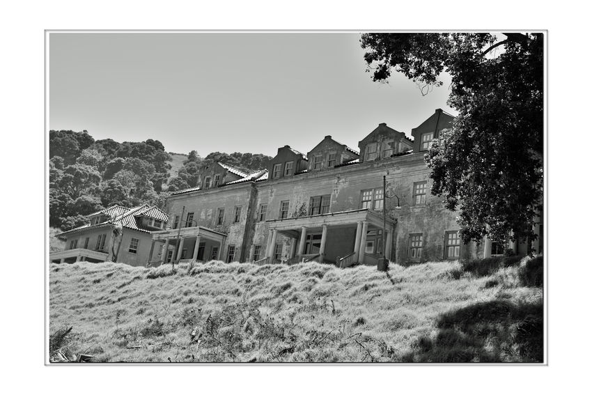 Officer's Row At Angel Island 2 Tiburon, Ca. Fort McDowell East Garrison Angel Island U.S.Army Officers Row Officers Quarters Built By Military Prison Labor From Alcatraz Monochrome_Photography Monochrome Black & White Black & White Photography Black And White Black And White Collection  Architecture Architecture_collection Housing Landscape_Collection Landscape Low Angel View Military Base Built 1910 Military History Bnw_friday_eyeemchallenge